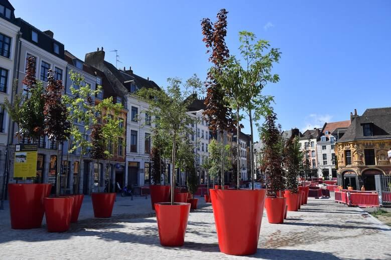 Lille, l'ambition d'une capitale verte