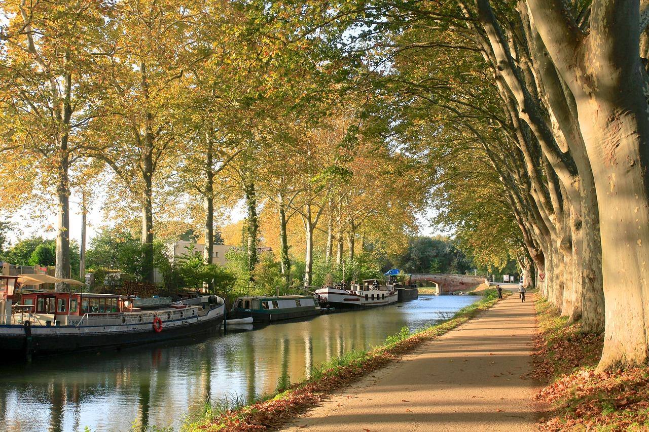 Toulouse, une ville culturelle et festive