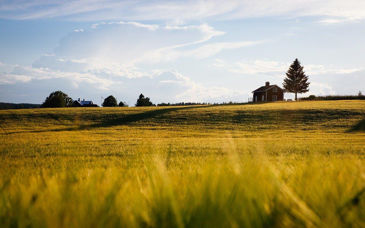 Comment choisir un terrain pour la construction de sa maison ?