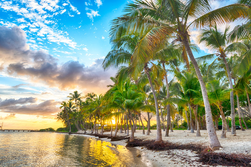 Comment bien profiter de ses vacances en Guadeloupe??