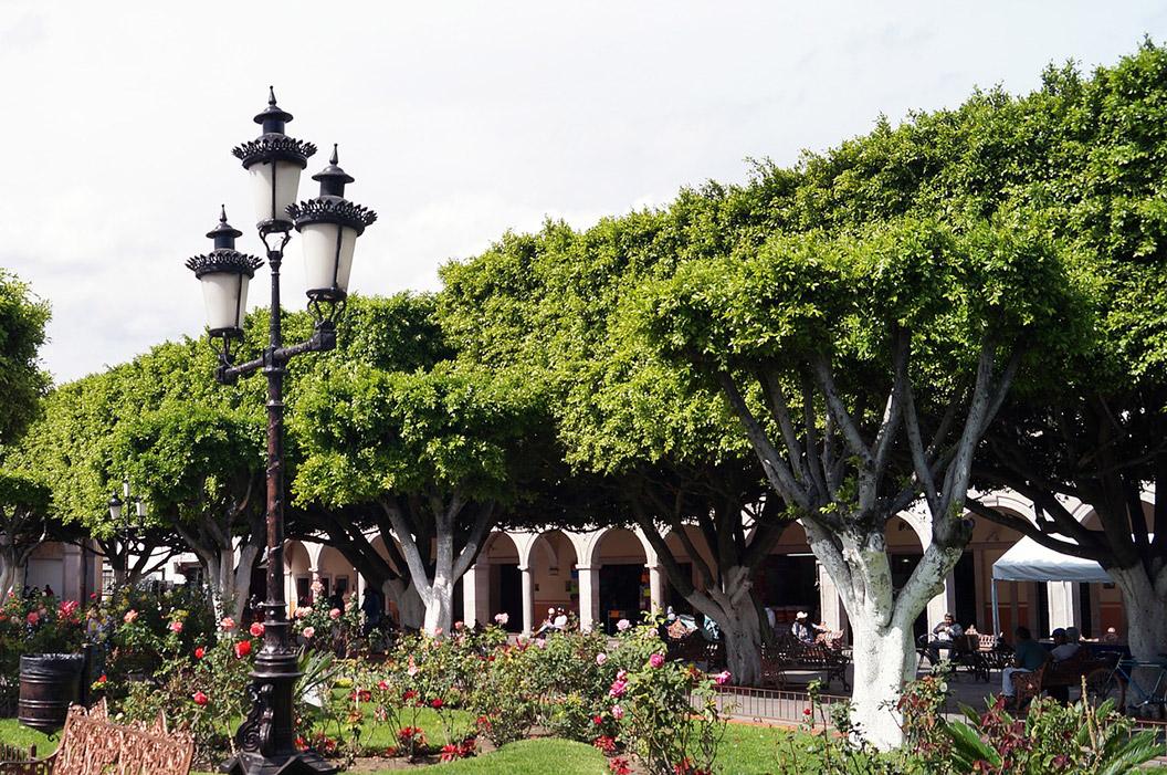les espaces publics dans les grandes villes françaises