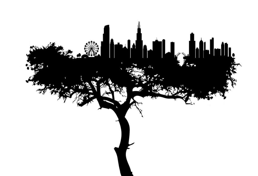 Les mesures environnementales dans les grandes villes françaises