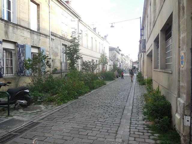 Végatalisation dans les rues bordelaises